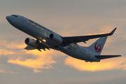 JA341J - JAL - Express Boeing 737-800 aircraft