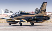 "438 - United Arab Emirates - Air Force ""Al Fursan&quo Aermacchi MB-339NAT aircraft"