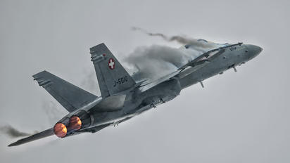 J-5010 - Switzerland - Air Force McDonnell Douglas F-18C Hornet