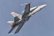 J-5010 - Switzerland - Air Force McDonnell Douglas F-18C Hornet aircraft
