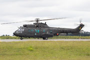 EB5008 - Brazil - Army Eurocopter EC-725/HM-4 Super Cougar aircraft