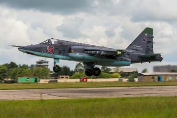RF-90960 - Russia - Air Force Sukhoi Su-25