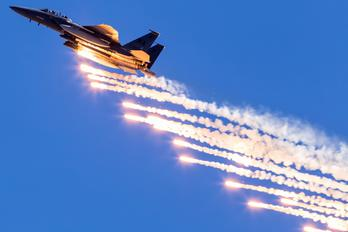 90-0260 - USA - Air Force McDonnell Douglas F-15E Strike Eagle