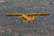 D-EGGM - Private Piper L-18 Super Cub aircraft