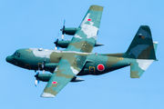75-1076 - Japan - Air Self Defence Force Lockheed C-130H Hercules aircraft