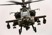 74508 - Japan - Ground Self Defense Force Fuji AH-64DJP aircraft