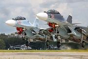 56 RED - Russia - Air Force Sukhoi Su-30SM aircraft