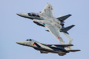 12-8078 - Japan - Air Self Defence Force Mitsubishi F-15DJ