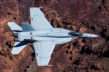 216 - USA - Navy McDonnell Douglas F/A-18E Super Hornet