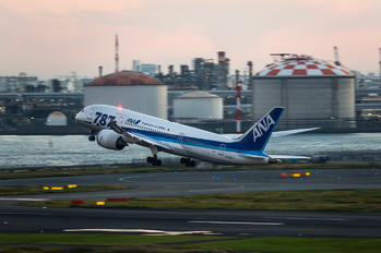 JA816A - ANA - All Nippon Airways Boeing 787-8 Dreamliner