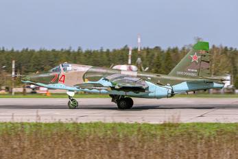 RF-95159 - Russia - Air Force Sukhoi Su-25