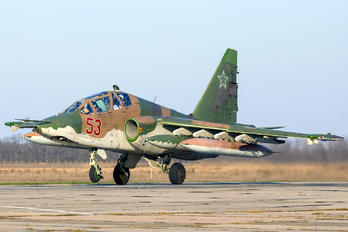 53 - Russia - Air Force Sukhoi Su-25UB