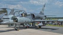 6060 - Czech - Air Force Aero L-159A  Alca aircraft