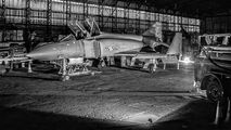 XT864 - Ulster Aviation Society McDonnell Douglas F-4 Phantom II aircraft