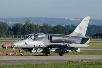 6063 - Czech - Air Force Aero L-159A  Alca