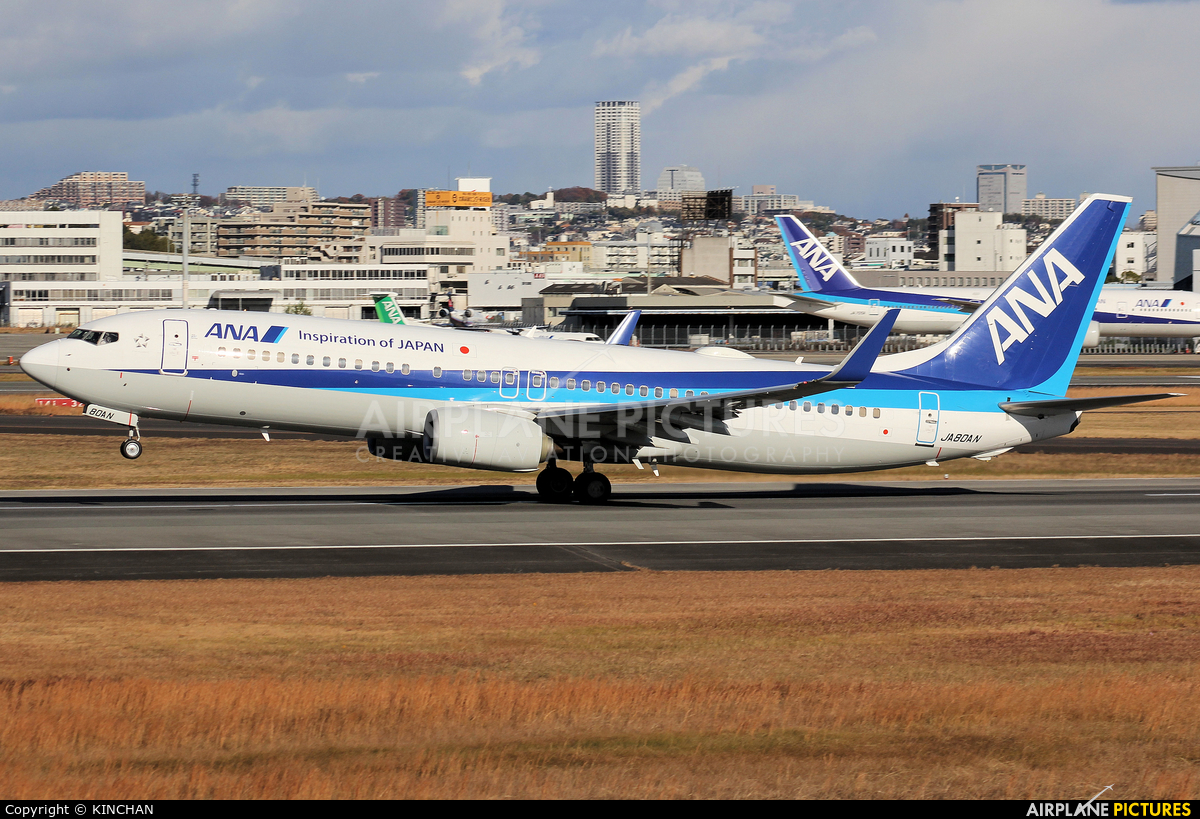 ANA - All Nippon Airways JA80AN aircraft at Osaka - Itami Intl