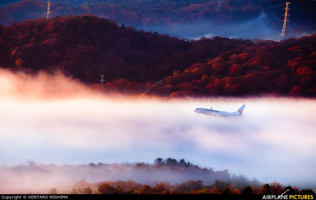 JAL - Japan Airlines JA345J aircraft at Okayama