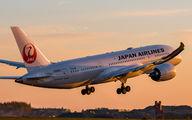 JA845J - JAL - Japan Airlines Boeing 787-8 Dreamliner aircraft