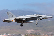 C.15-50 - Spain - Air Force McDonnell Douglas EF-18A Hornet aircraft