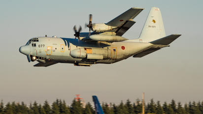 75-1077 - Japan - Air Self Defence Force Lockheed C-130H Hercules