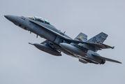 165531 - USA - Navy McDonnell Douglas F/A-18D Hornet aircraft