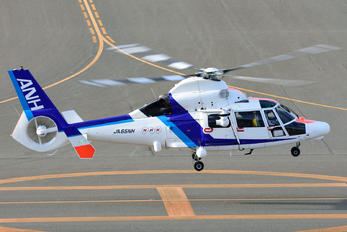 JA65NH - ANH - All Nippon Helicopter Eurocopter AS365 Dauphin 2