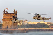 IN557 - India - Navy Westland Sea King Mk.43B aircraft
