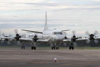 5063 - Japan - Maritime Self-Defense Force Lockheed P-3C Orion