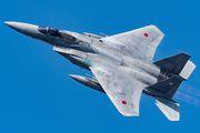 22-8805 - Japan - Air Self Defence Force Mitsubishi F-15J aircraft
