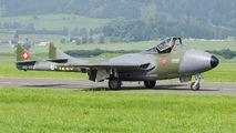 HB-RVJ - Fliegermuseum Altenrhein de Havilland DH.115 Vampire T.55 aircraft