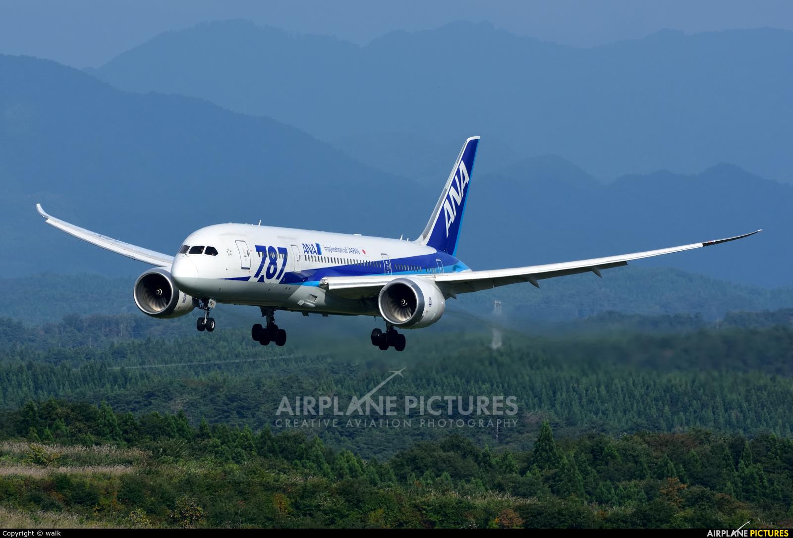 ANA - All Nippon Airways JA810A aircraft at Akita