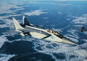 RF-95455 - Russia - Air Force Mikoyan-Gurevich MiG-31 (all models) aircraft