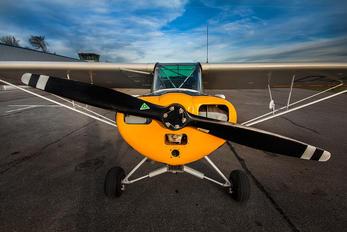 D-EDSL - Private Piper L-18 Super Cub