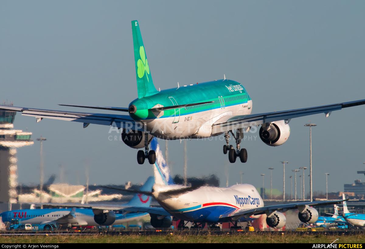 Aer Lingus EI-DEC aircraft at Amsterdam - Schiphol