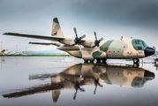 501 - Oman - Air Force Lockheed C-130H Hercules aircraft