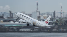 JA314J - JAL - Japan Airlines Boeing 737-800 aircraft