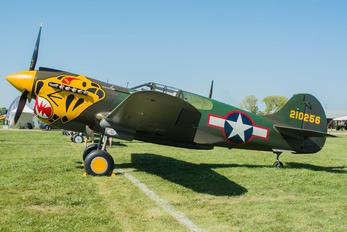 N401WH - Private Curtiss P-40K Warhawk