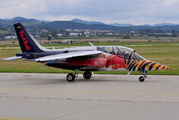 D-IFDM - The Flying Bulls Dassault - Dornier Alpha Jet A aircraft