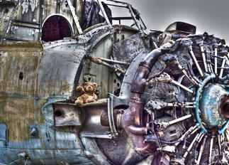 - - Ukraine - Air Force Antonov An-2
