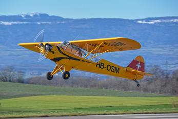 HB-OSM - Private Piper L-4 Cub