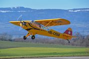HB-OSM - Private Piper L-4 Cub aircraft