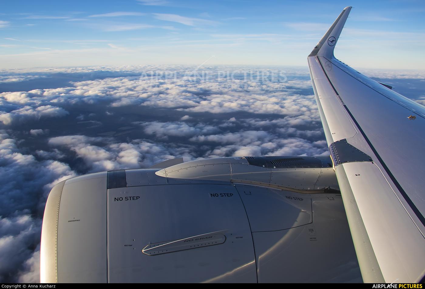 Lufthansa D-AINA aircraft at In Flight - International