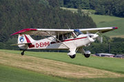 D-EHHI - Private Christen A-1 Husky aircraft