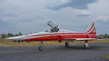 J-3086 - Switzerland - Air Force:  Patrouille de Suisse Northrop F-5E Tiger II aircraft