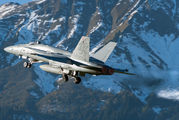 J-5017 - Switzerland - Air Force McDonnell Douglas F/A-18C Hornet aircraft