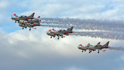 "027 - Poland - Air Force ""Orlik Acrobatic Group"" PZL 130 Orlik TC-1 / 2"