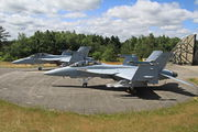 168890 - USA - Navy McDonnell Douglas F/A-18F Super Hornet aircraft