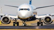 EI-DLF - Ryanair Boeing 737-800 aircraft