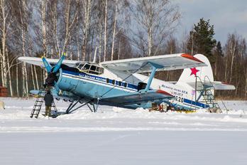 RF-01220 - DOSAAF / ROSTO Antonov An-2