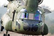 D-665 - Netherlands - Air Force Boeing CH-47D Chinook aircraft